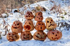 Group of Halloween pumpkin Stock Image
