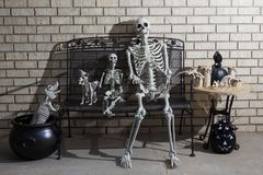Group of Halloween skeletons with dramatic shadow lighting. Group of Halloween skeletons on a front porch with dramatic shadow lighting stock photo