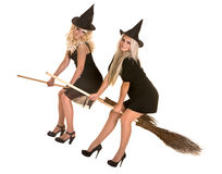 Group Halloween witch in black hat fly on broom Royalty Free Stock Photography