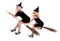 Group Halloween witch in hat fly on broom. Royalty Free Stock Photo