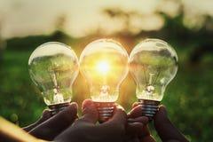 Group hand holding lightbulb with sunset. concept idea solar ene. Rgy Royalty Free Stock Photo