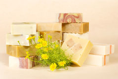 Group of handmade soap with herbal material Royalty Free Stock Photo