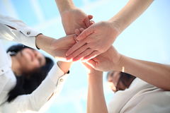 Group handshake with a lot of different hands. In modern office Royalty Free Stock Photos