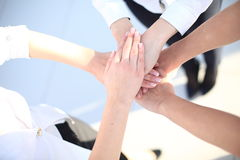 Group handshake with a lot of different hands. In modern office Stock Photography