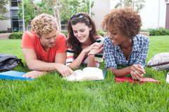 Group of happy college students in grass. Group of happy college students lying in the grass with notebooks Stock Image