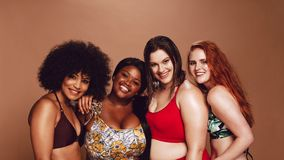 Group of happy different size women in bikinis. Looking at camera and smiling. Multi-ethnic women in swimwear posing together in studio royalty free stock images