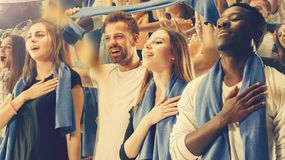 Stadium soccer fans emotions portrait royalty free stock image