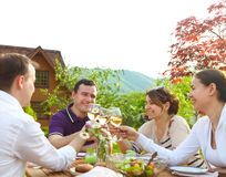 Group of happy friends toasting wine glasses in the garden. While having lunch Royalty Free Stock Photography