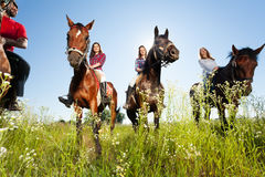 Group of happy horse riders in flowery meadow Stock Images
