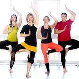 Group of happy people standing in yoga asana in class royalty free stock images