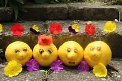 Group of happy, smiling lemons take time out while on vacation to pose for the camera. stock photography