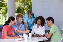 Group of happy students studying. Portrait of group of happy students studying Stock Images