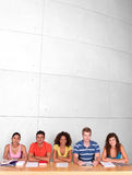 Group of happy students studying. Portrait of group of happy students studying Royalty Free Stock Image