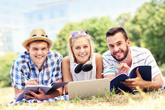 Group of happy students studying in the park Stock Photography