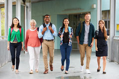 A group of happy teachers walking in a school corridor Royalty Free Stock Photo