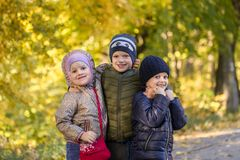 Group of happy three kids having fun outdoors in autumn park. Cute children enjoy hugging together against golden fall background. royalty free stock image