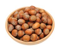 Group hard  hazelnut Stock Images