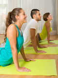 Group having yoga class in sport club Royalty Free Stock Image