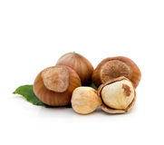 Group of hazelnut Royalty Free Stock Photo