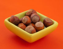 Group of hazelnuts in a bowl. Stock Images