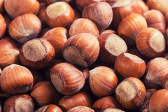 Group of hazelnuts. Texture . Macro shot Royalty Free Stock Photo