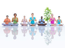 Group of Healthy People in the Fitness Royalty Free Stock Image