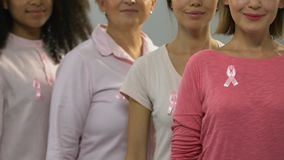 Group of healthy women with pink ribbons smiling at camera, anti-cancer campaign stock video footage