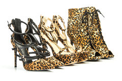 Group of high heels in animal print design Stock Images