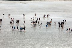 Group of hikers in the bay at low tide. Hike in the bay with a knowledgeable guide. Mont Saint-Michel , Normandy, France. Le Mont-Saint-Michel, France royalty free stock photos