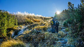 Group of hikers climb the frozen mountain at sunrise Royalty Free Stock Images