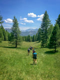 Group of hikers in a green meadow with pine trees, Queyras, the Alps Stock Photography