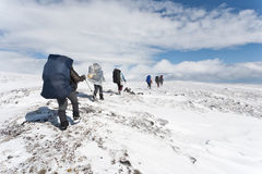 Group of hikers. Royalty Free Stock Photos