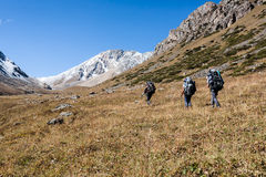 Group of hikers in mountains. Group of hikers in Tien Shan mountains, central asia, Kyrgyzstan. Climbing and mountaineering concept Royalty Free Stock Images