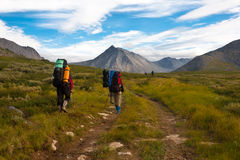 Group of hikers. Royalty Free Stock Photography