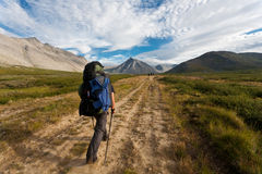 Group of hikers. Royalty Free Stock Photo