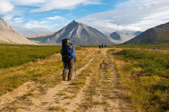 Group of hikers. Stock Photos