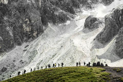 Group of hikers, Pale di San Martino - Dolomites Royalty Free Stock Photography