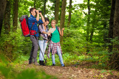 Group of hikers searching right direction Royalty Free Stock Image