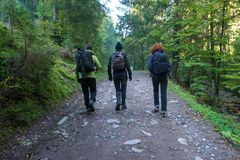 Group of hikers on a trail Stock Photos