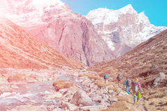 Group of Hikers walking in Mountains rear View Stock Image