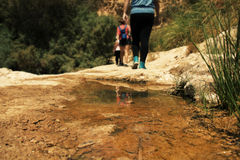 Group of hikers walking in rocky desert trail.  royalty free stock photo