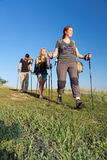 Group of hikers walks on grassy lawn Stock Photography