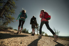Group of hikers on the walkway. At sunny day Stock Images