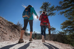 Group of hikers on the walkway. At sunny day royalty free stock photography