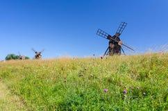 Group of historical windmills on Oland island Stock Image