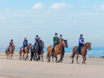 Group of horse riders on the beach Royalty Free Stock Photos