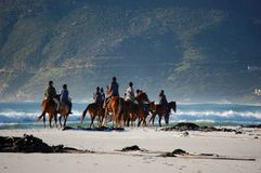 Horse riders at the beach with mountains in South Africa, Cape Town. A group of horse riders at the beach slowly riding along the beach in South Africa, Cape royalty free stock photos