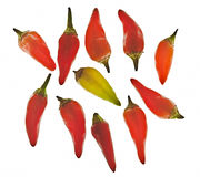 Group of hot red chili peppers Royalty Free Stock Image