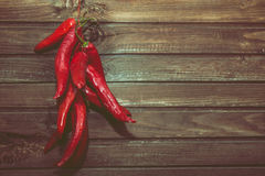 Group of hot red pepper Stock Image