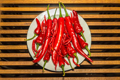 Group of hot spicy chilli peppers Royalty Free Stock Photos
